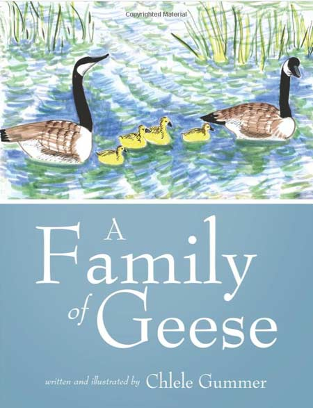 book by Chlele Payne Gummer